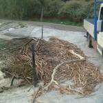 Limpieza accesos rampas (2)